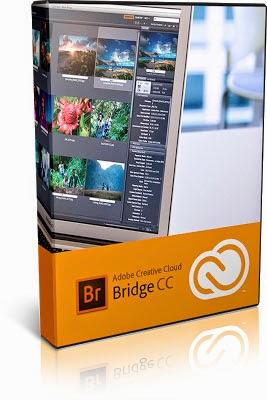 Download Adobe Bridge-daily2k