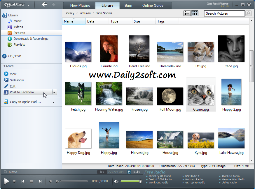 RealPlayer Crack Free Download For Windows LATEST HERE!